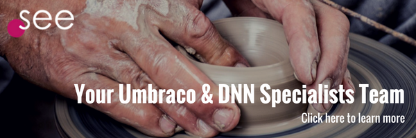 DotSee Umbraco and DNN Services